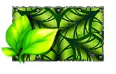 Tropical foliage.png